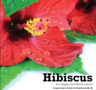 Health Secrets of Hibiscus